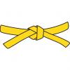 חגורה צהובה